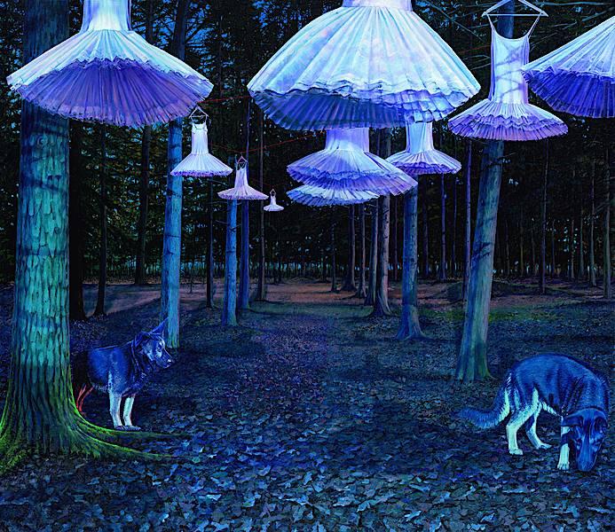 Der seltene Wald