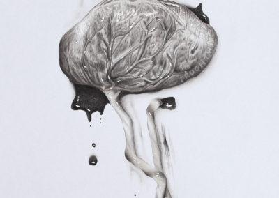 """Gregor Graf, """"Plazenta"""", Zeichnung auf Papier, 35 x 50cm, 2018"""